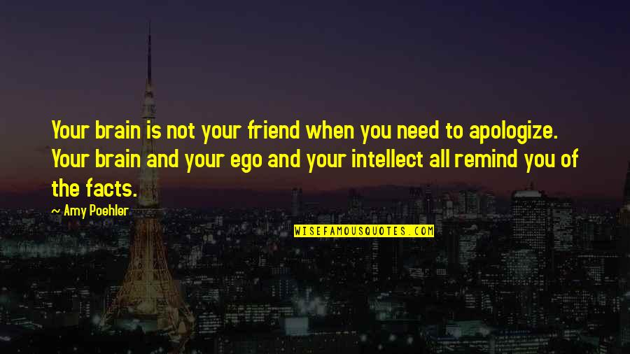 Czech Brothers Quotes By Amy Poehler: Your brain is not your friend when you