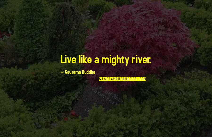 Daca Quotes By Gautama Buddha: Live like a mighty river.