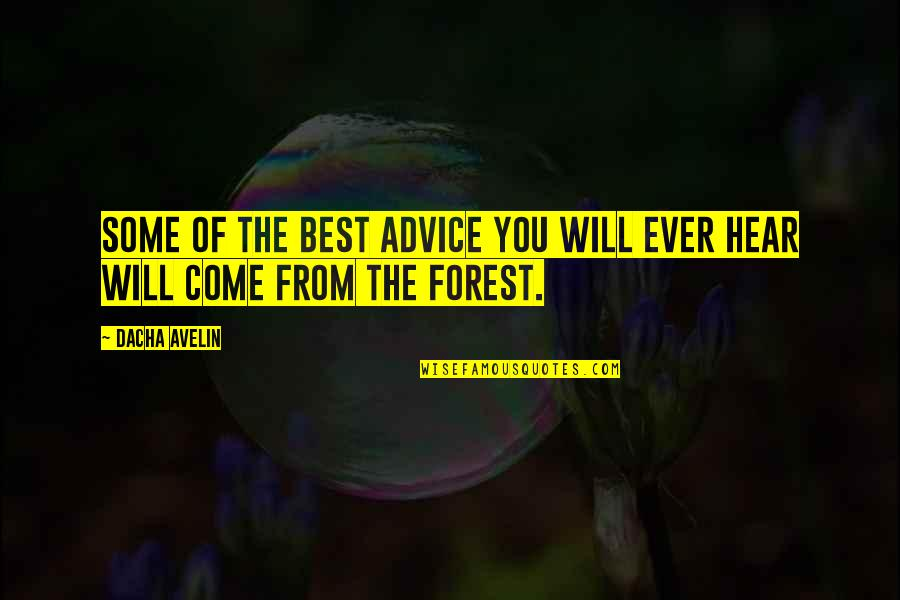 Dacha Quotes By Dacha Avelin: Some of the best advice you will ever