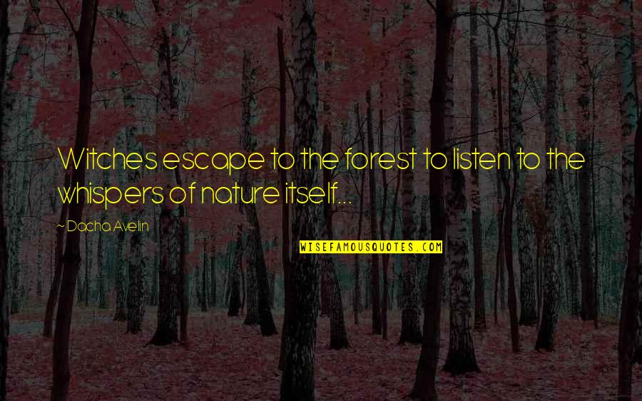 Dacha Quotes By Dacha Avelin: Witches escape to the forest to listen to