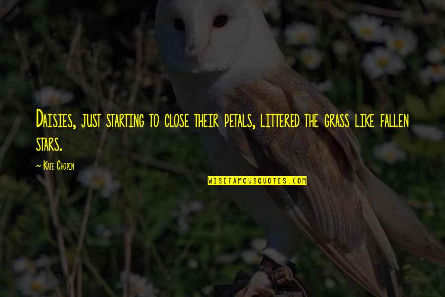 Daisies Quotes: top 55 famous quotes about Daisies