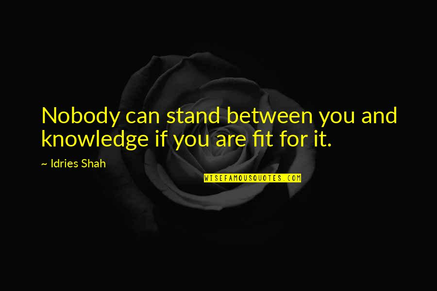 Daisy Buchanan Superficial Quotes By Idries Shah: Nobody can stand between you and knowledge if