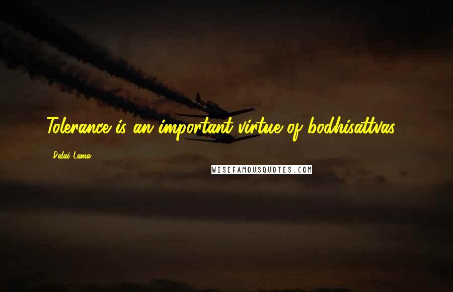 Dalai Lama quotes: Tolerance is an important virtue of bodhisattvas .
