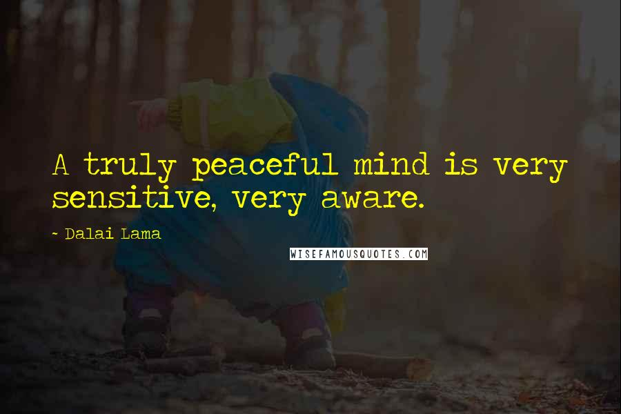 Dalai Lama quotes: A truly peaceful mind is very sensitive, very aware.