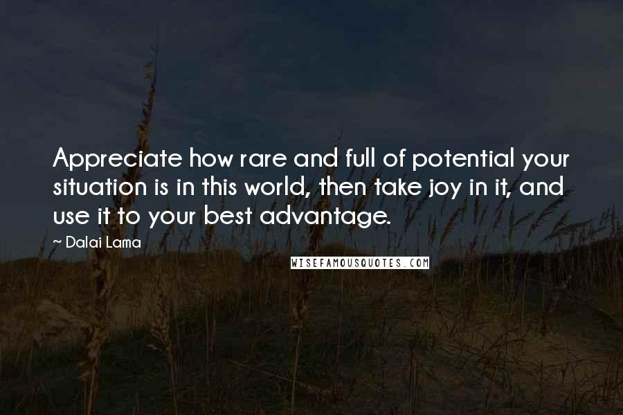Dalai Lama quotes: Appreciate how rare and full of potential your situation is in this world, then take joy in it, and use it to your best advantage.
