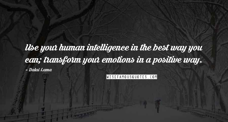 Dalai Lama quotes: Use your human intelligence in the best way you can; transform your emotions in a positive way.