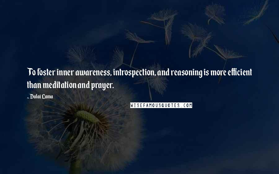 Dalai Lama quotes: To foster inner awareness, introspection, and reasoning is more efficient than meditation and prayer.