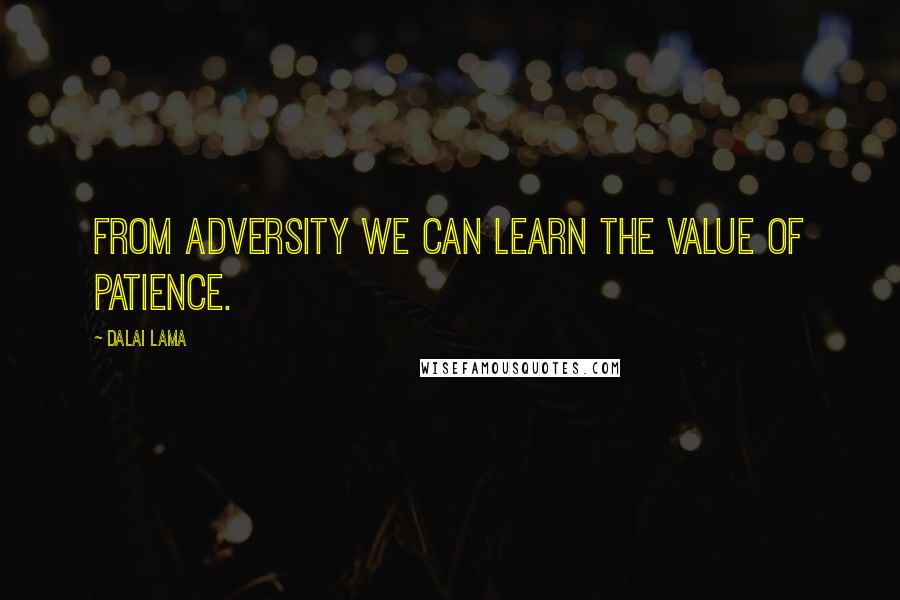 Dalai Lama quotes: From adversity we can learn the value of patience.