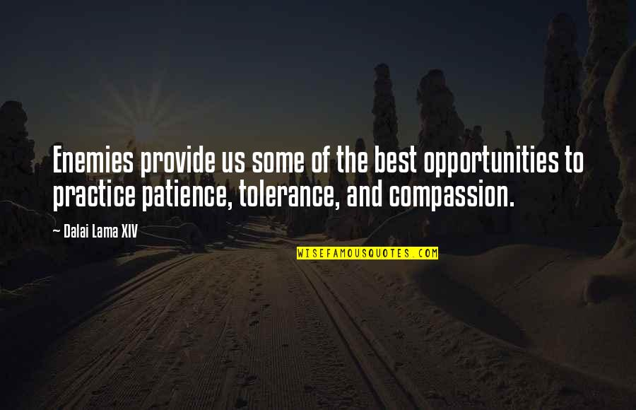 Dalai Lama Xiv Quotes By Dalai Lama XIV: Enemies provide us some of the best opportunities