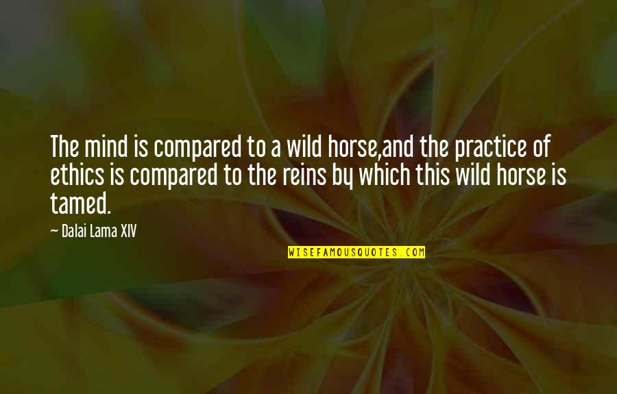 Dalai Lama Xiv Quotes By Dalai Lama XIV: The mind is compared to a wild horse,and