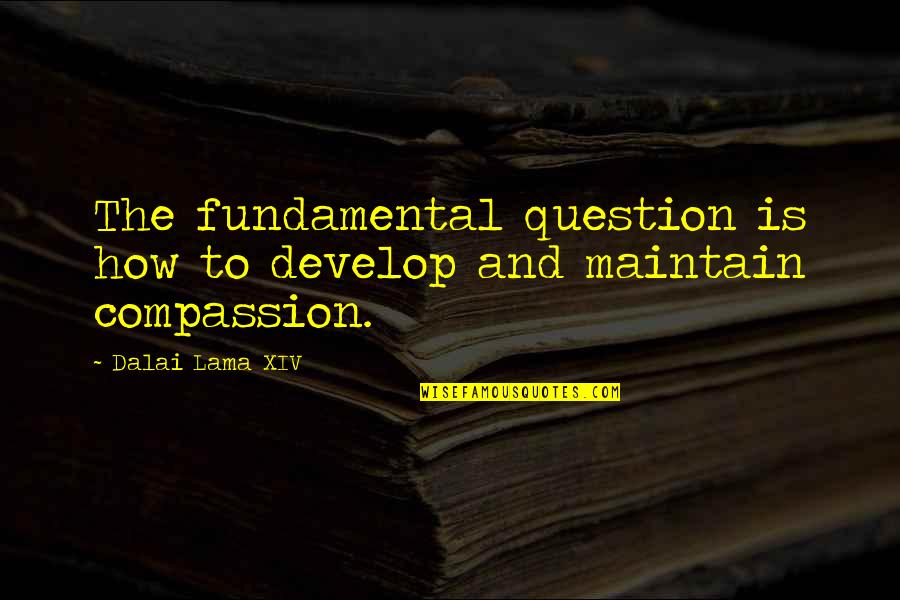 Dalai Lama Xiv Quotes By Dalai Lama XIV: The fundamental question is how to develop and