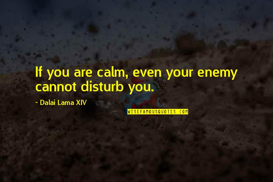 Dalai Lama Xiv Quotes By Dalai Lama XIV: If you are calm, even your enemy cannot