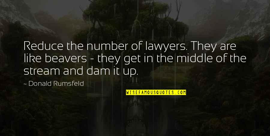 Dam Quotes By Donald Rumsfeld: Reduce the number of lawyers. They are like