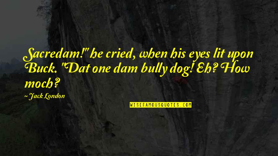 """Dam Quotes By Jack London: Sacredam!"""" he cried, when his eyes lit upon"""