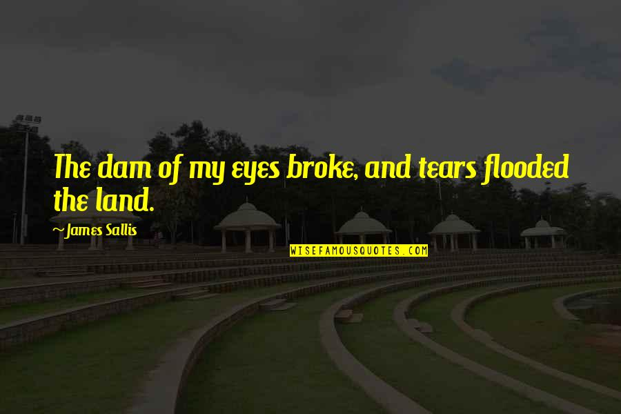 Dam Quotes By James Sallis: The dam of my eyes broke, and tears