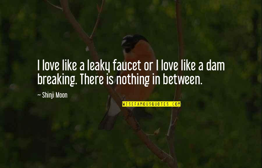 Dam Quotes By Shinji Moon: I love like a leaky faucet or I