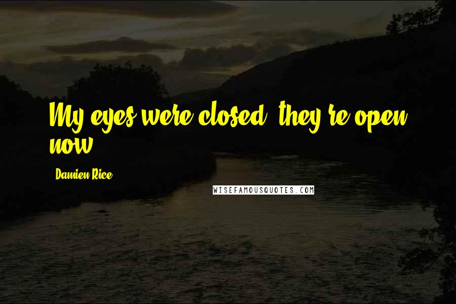 Damien Rice quotes: My eyes were closed, they're open now
