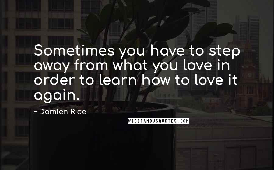 Damien Rice quotes: Sometimes you have to step away from what you love in order to learn how to love it again.