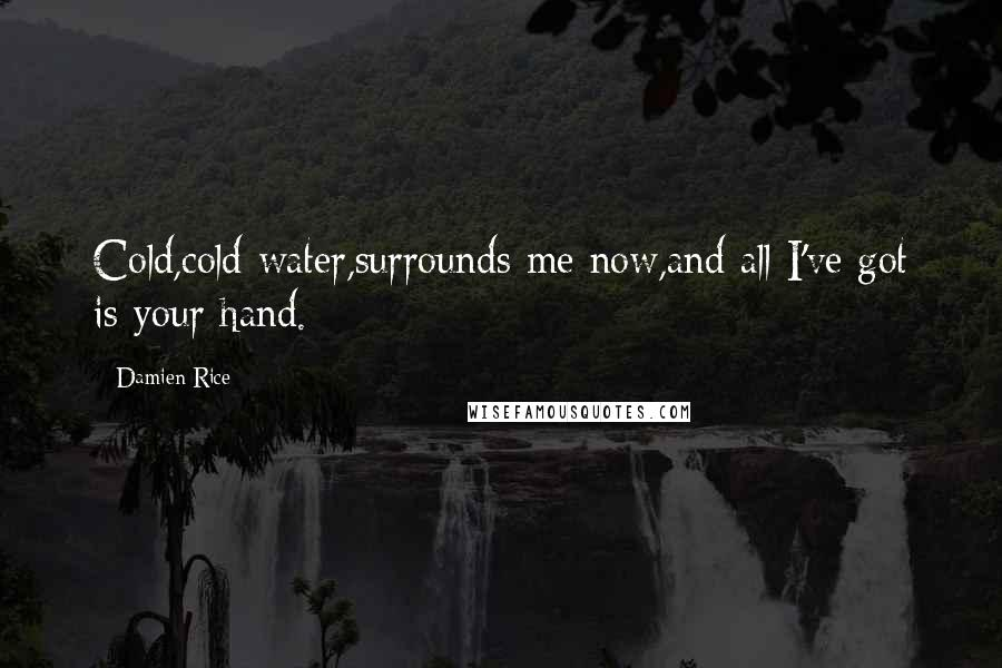 Damien Rice quotes: Cold,cold water,surrounds me now,and all I've got is your hand.