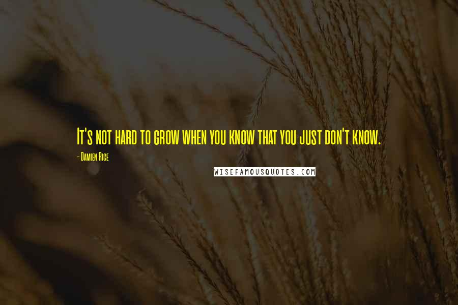 Damien Rice quotes: It's not hard to grow when you know that you just don't know.
