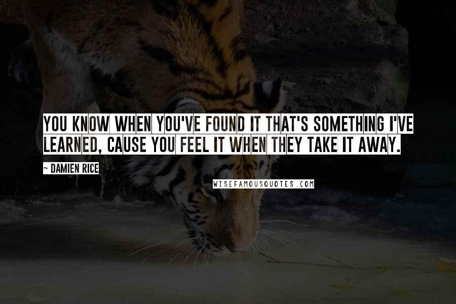 Damien Rice quotes: You know when you've found it that's something I've learned, cause you feel it when they take it away.