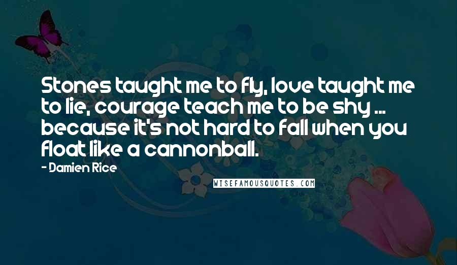 Damien Rice quotes: Stones taught me to fly, love taught me to lie, courage teach me to be shy ... because it's not hard to fall when you float like a cannonball.