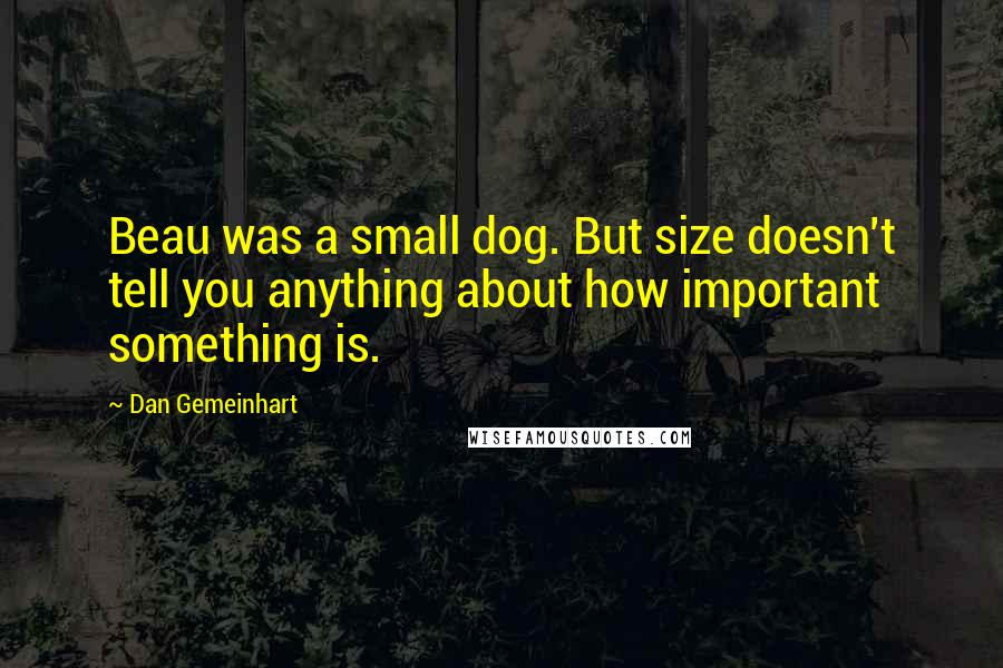 Dan Gemeinhart quotes: Beau was a small dog. But size doesn't tell you anything about how important something is.