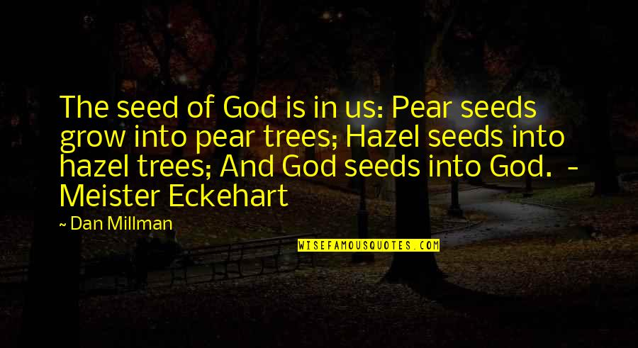 Dan Millman Quotes By Dan Millman: The seed of God is in us: Pear