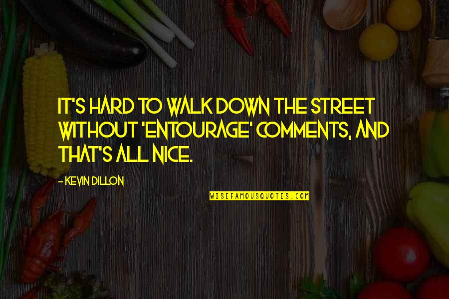 Dan Sullivan Quotes By Kevin Dillon: It's hard to walk down the street without
