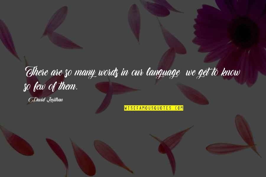 Danastabenow Quotes By David Levithan: There are so many words in our language;