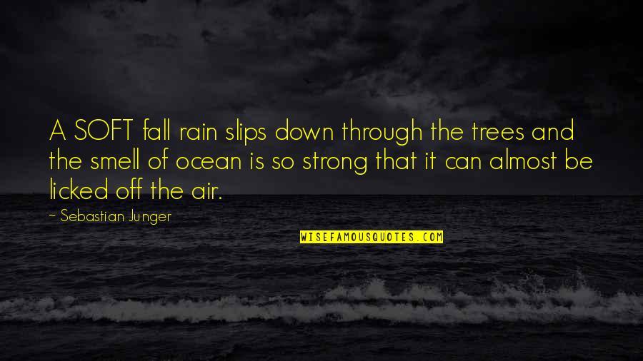 Dance Central 2 Quotes By Sebastian Junger: A SOFT fall rain slips down through the