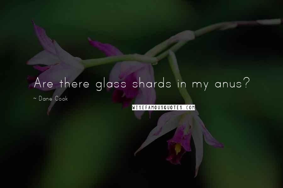 Dane Cook quotes: Are there glass shards in my anus?