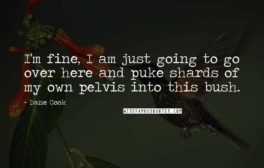 Dane Cook quotes: I'm fine, I am just going to go over here and puke shards of my own pelvis into this bush.