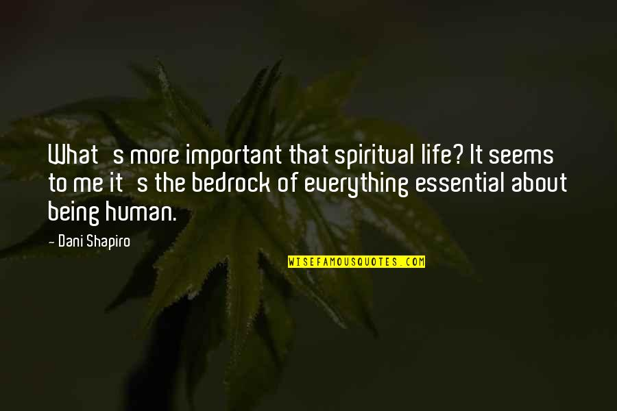 Dani Quotes By Dani Shapiro: What's more important that spiritual life? It seems