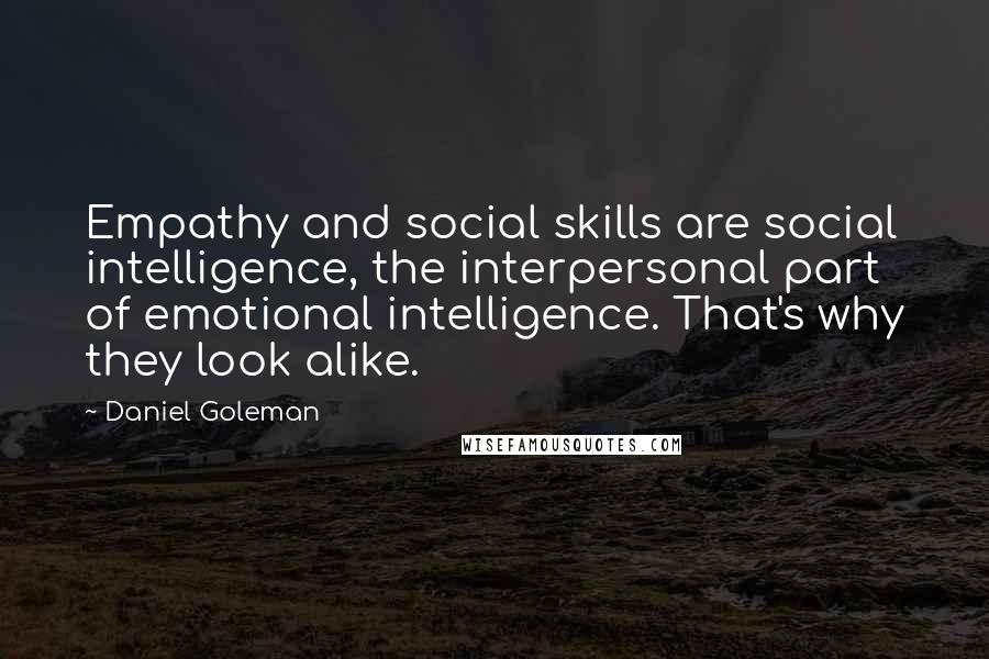 Daniel Goleman quotes: Empathy and social skills are social intelligence, the interpersonal part of emotional intelligence. That's why they look alike.