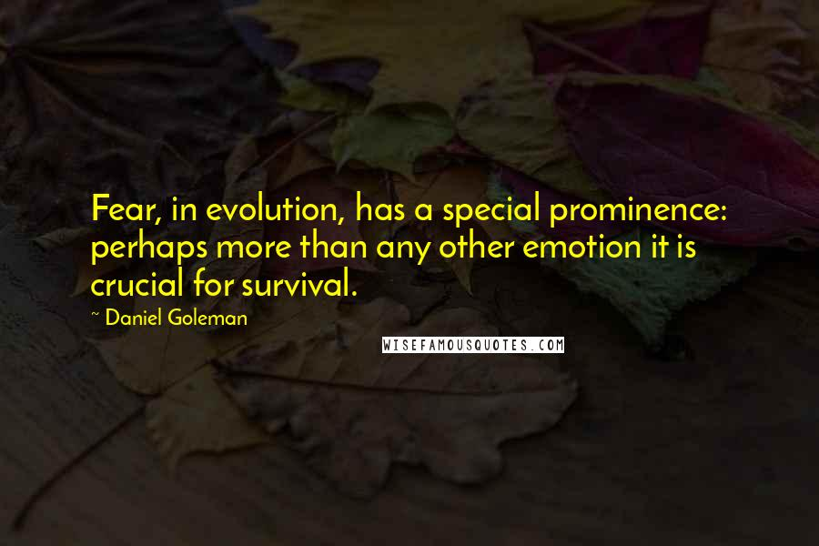 Daniel Goleman quotes: Fear, in evolution, has a special prominence: perhaps more than any other emotion it is crucial for survival.