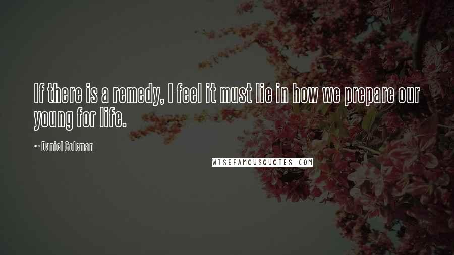 Daniel Goleman quotes: If there is a remedy, I feel it must lie in how we prepare our young for life.