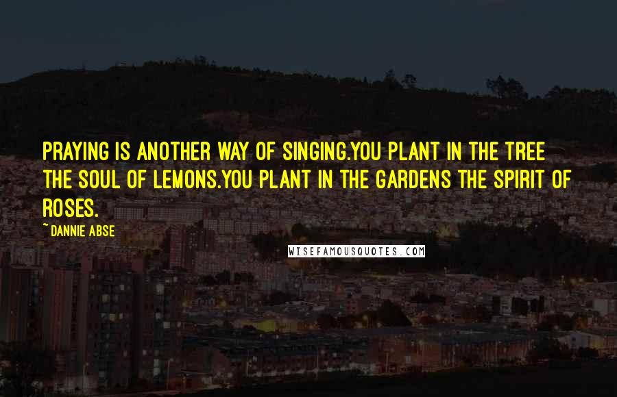 Dannie Abse quotes: Praying is another way of singing.You plant in the tree the soul of lemons.You plant in the gardens the spirit of roses.