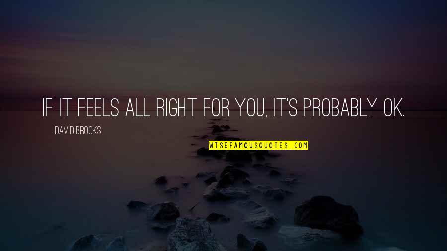 Danske Quotes By David Brooks: If it feels all right for you, it's