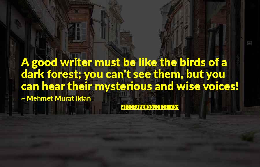 Dark And Mysterious Quotes By Mehmet Murat Ildan: A good writer must be like the birds