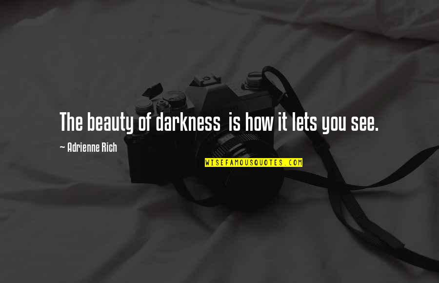 Darkness And Beauty Quotes By Adrienne Rich: The beauty of darkness is how it lets