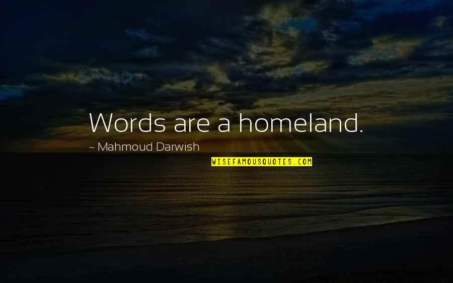 Darwish Quotes By Mahmoud Darwish: Words are a homeland.