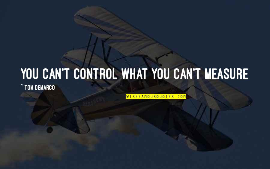 Dating For 6 Months Quotes By Tom DeMarco: You can't control what you can't measure