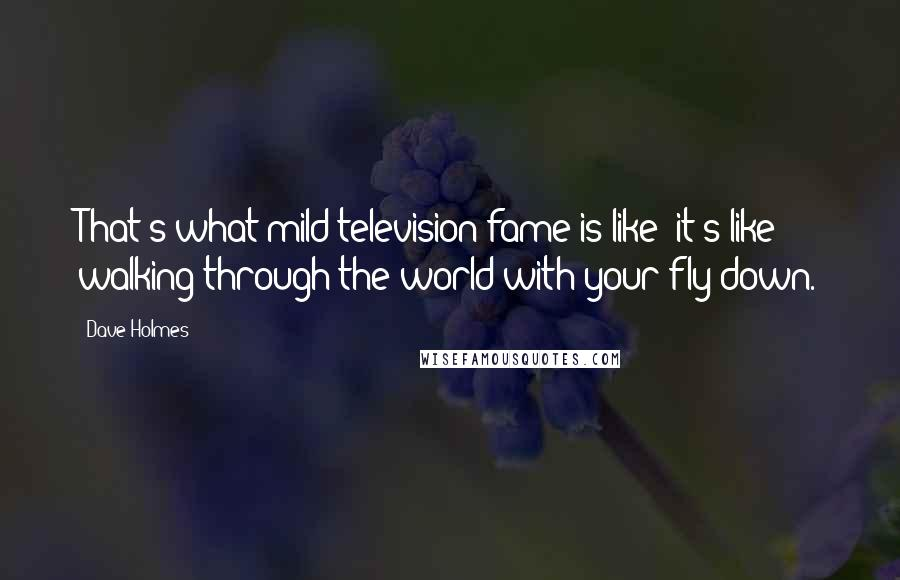 Dave Holmes quotes: That's what mild television fame is like: it's like walking through the world with your fly down.