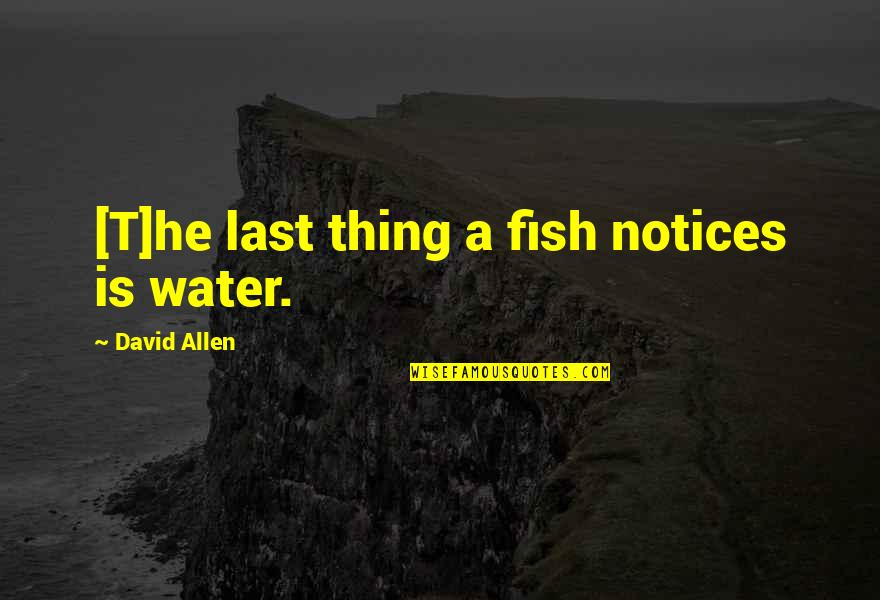 David Allen Quotes By David Allen: [T]he last thing a fish notices is water.
