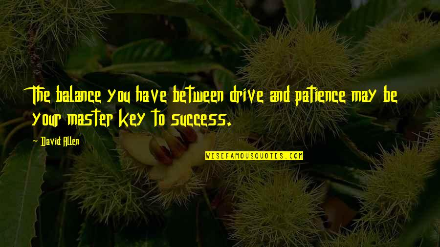 David Allen Quotes By David Allen: The balance you have between drive and patience