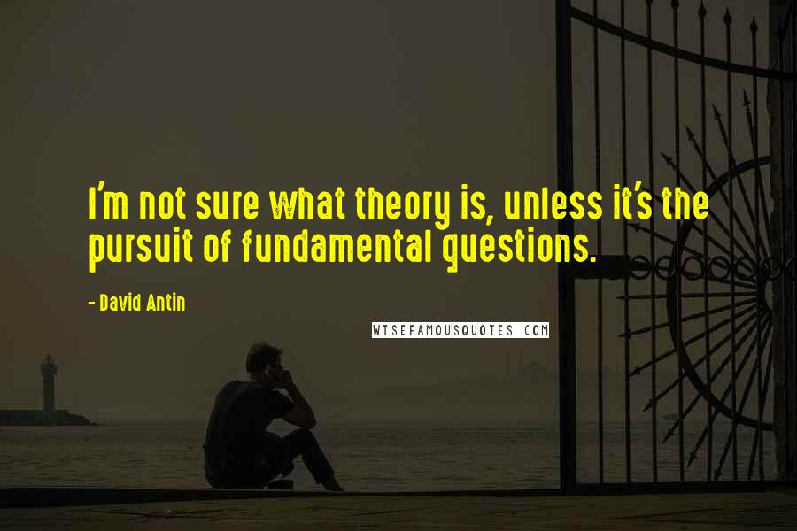 David Antin quotes: I'm not sure what theory is, unless it's the pursuit of fundamental questions.