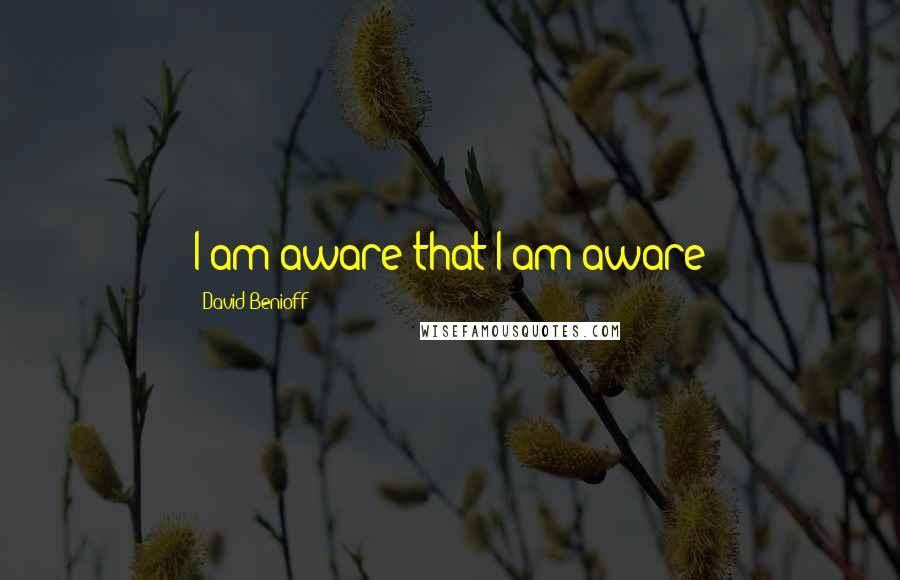 David Benioff quotes: I am aware that I am aware