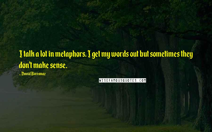 David Boreanaz quotes: I talk a lot in metaphors. I get my words out but sometimes they don't make sense.