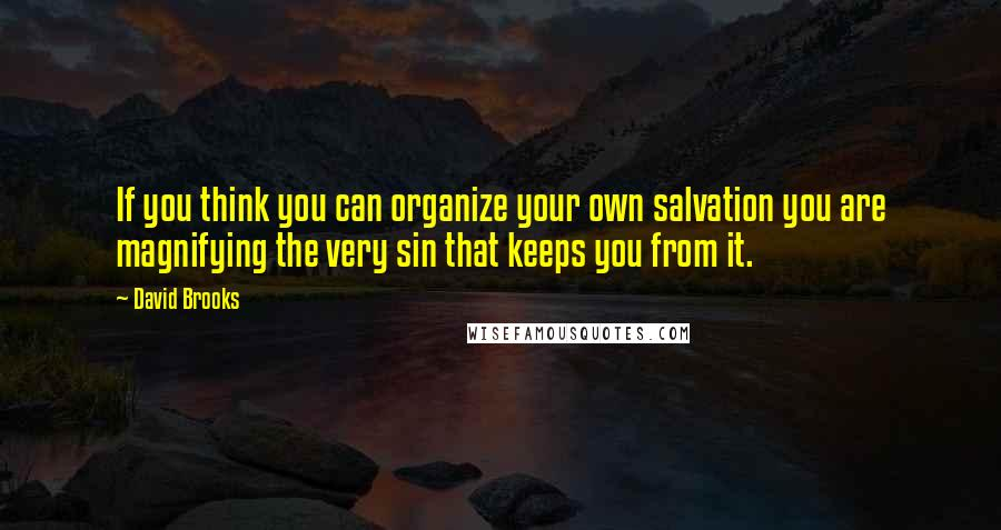 David Brooks quotes: If you think you can organize your own salvation you are magnifying the very sin that keeps you from it.